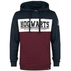 Sudadera Hogwarts, Harry Potter