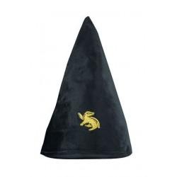 Sombrero Hufflepuf, Harry Potter