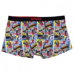 Boxer Superman adulto
