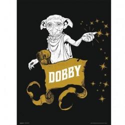 Lámina Dobby, 30x40cm, cartón, Harry Potter