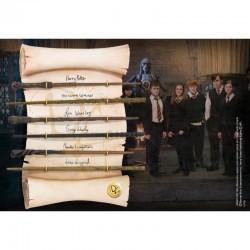 Expositor con varitas Ejército de Dumbledore, Harry Potter