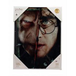 Póster de cristal Harry y Voldemort
