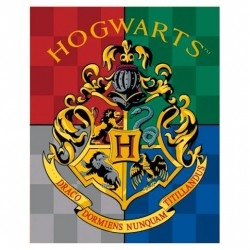 Manta Premium Hogwarts, Harry Potter