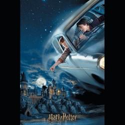 Puzzle lenticular Ron y Harry en el Ford Anglia 300 pz