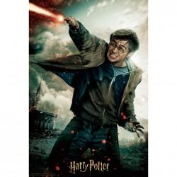 Puzzle lenticular Harry...