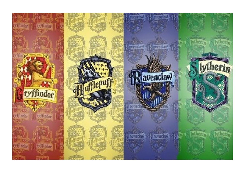 ¿A qué casa perteneces?